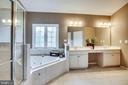 Master bath - 42926 CLOVERLEAF CT, BROADLANDS