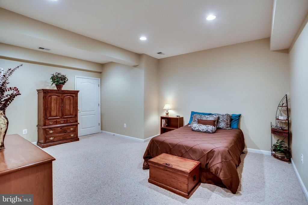 Lower level guest room - 42926 CLOVERLEAF CT, BROADLANDS