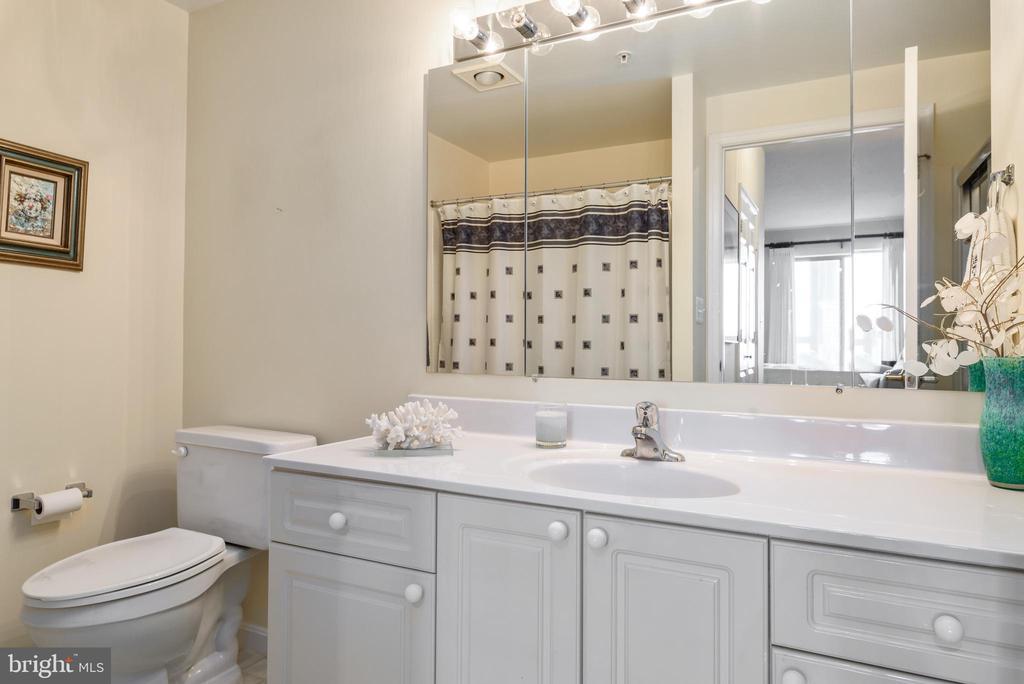 Master Bathroom - 19355 CYPRESS RIDGE TER #615, LEESBURG