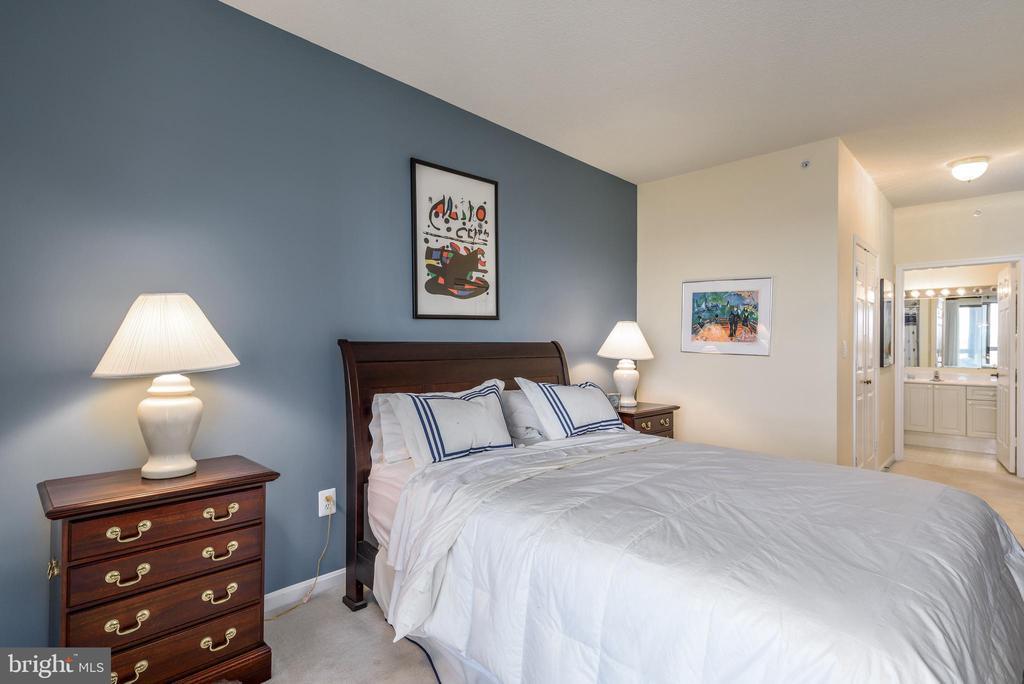 Master Bedroom. - 19355 CYPRESS RIDGE TER #615, LEESBURG