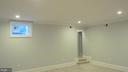 Game Room / Bunker for  Natural Disasters - 1103 WALKER CIR SW, VIENNA