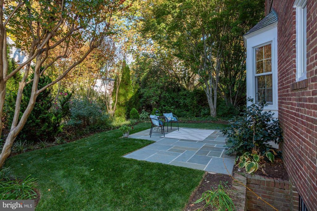 Patio and lush back yard - 3719 CHESAPEAKE ST NW, WASHINGTON