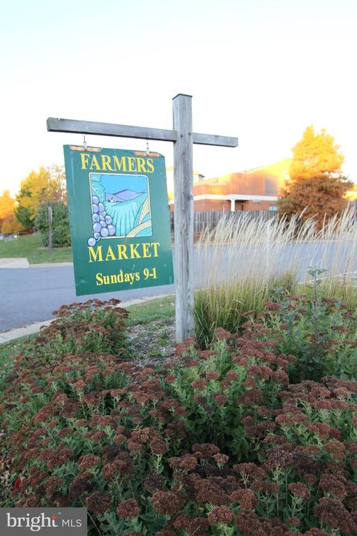 Farmer's Market at Cascades Marketplace - 47125 KENTWELL PL, STERLING