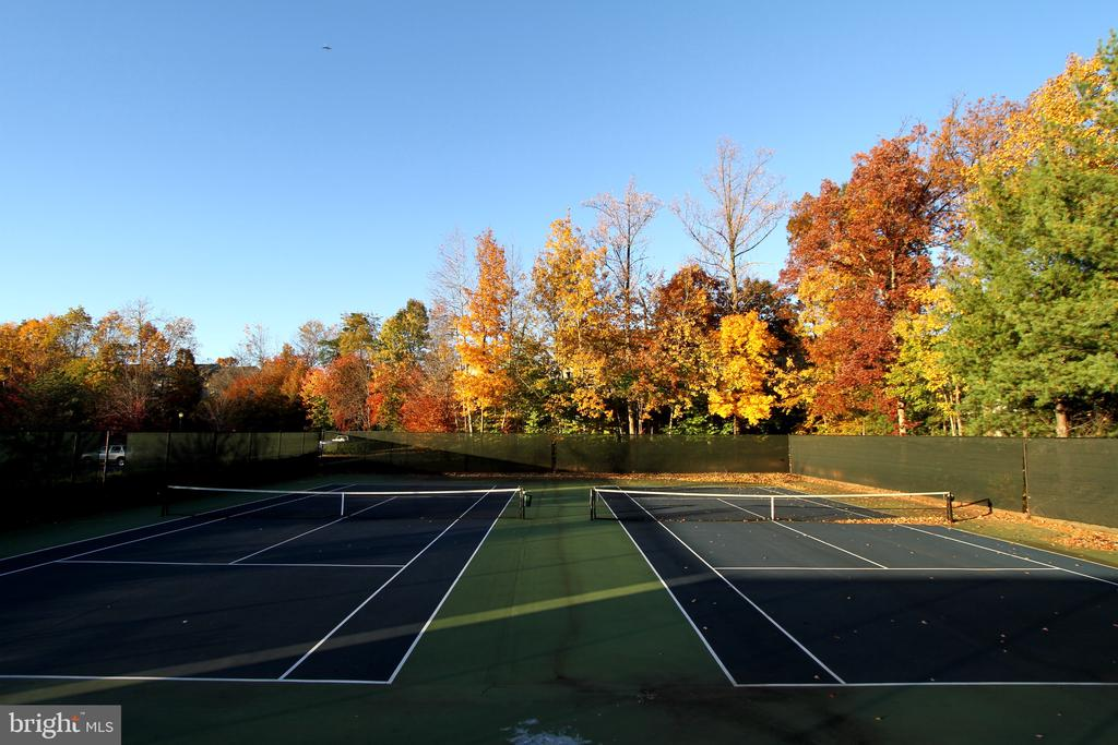 Community Tennis Courts - 47125 KENTWELL PL, STERLING