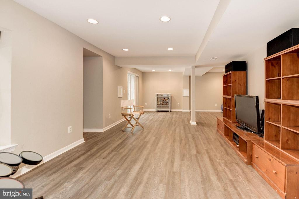 Lower Level Rec Room - 1304 CASSIA ST, HERNDON