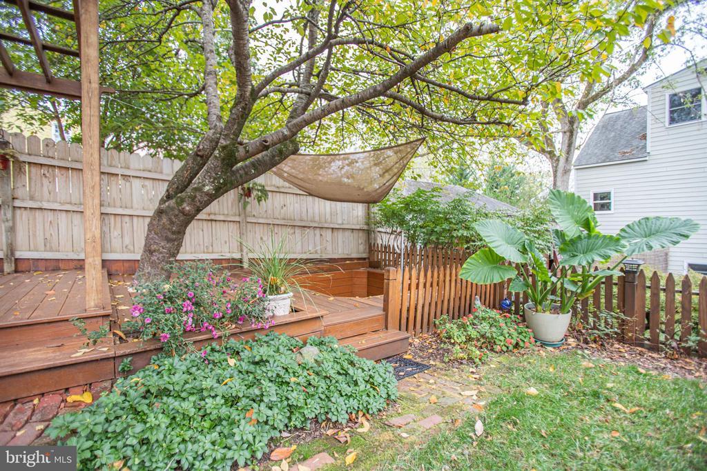 Back yard is a beauty - 232 PRINCESS ANNE ST, FREDERICKSBURG