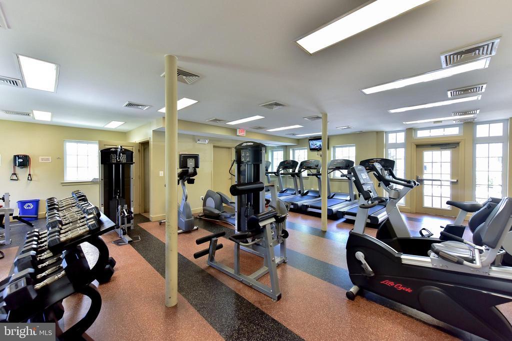 Community gym. - 4165 S FOUR MILE RUN DR #204, ARLINGTON