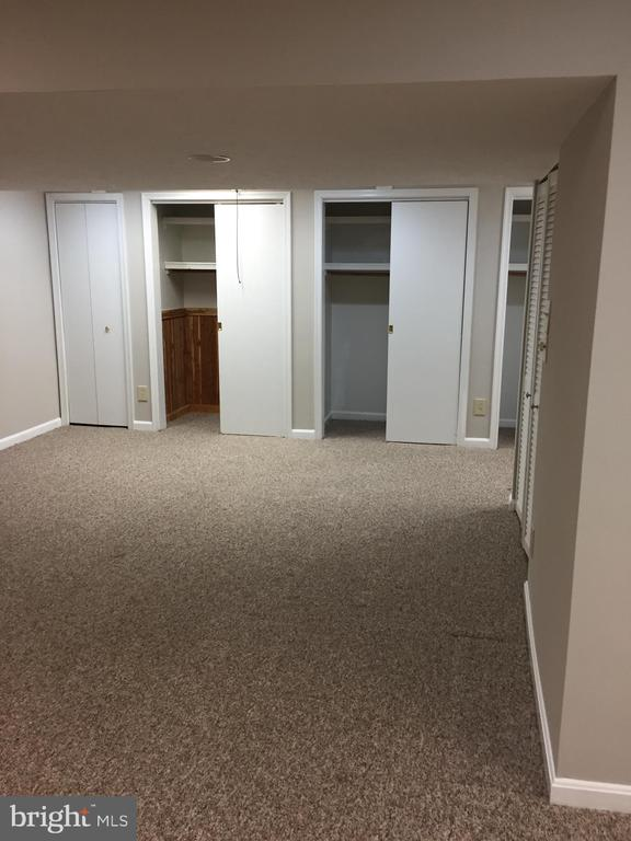 Basement - 5701 WOODEN HAWK LN, BURKE