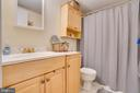 Lower Level Private Bathroom - 11989 POINT LONGSTREET WAY, WOODBRIDGE