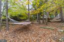Wooded, Private Backyard - 11989 POINT LONGSTREET WAY, WOODBRIDGE