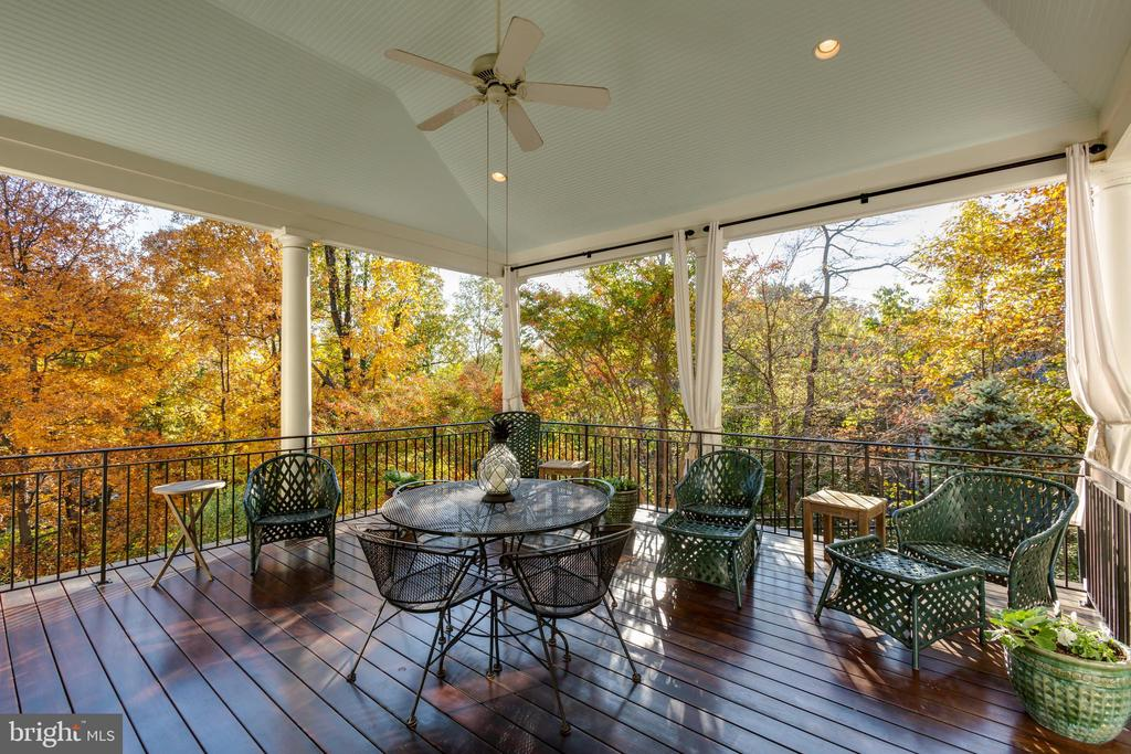 Views of the foliage from the airy covered deck - 1103 FINLEY LN, ALEXANDRIA