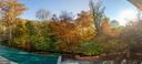 Lush trees provide a fully private backyard - 1103 FINLEY LN, ALEXANDRIA