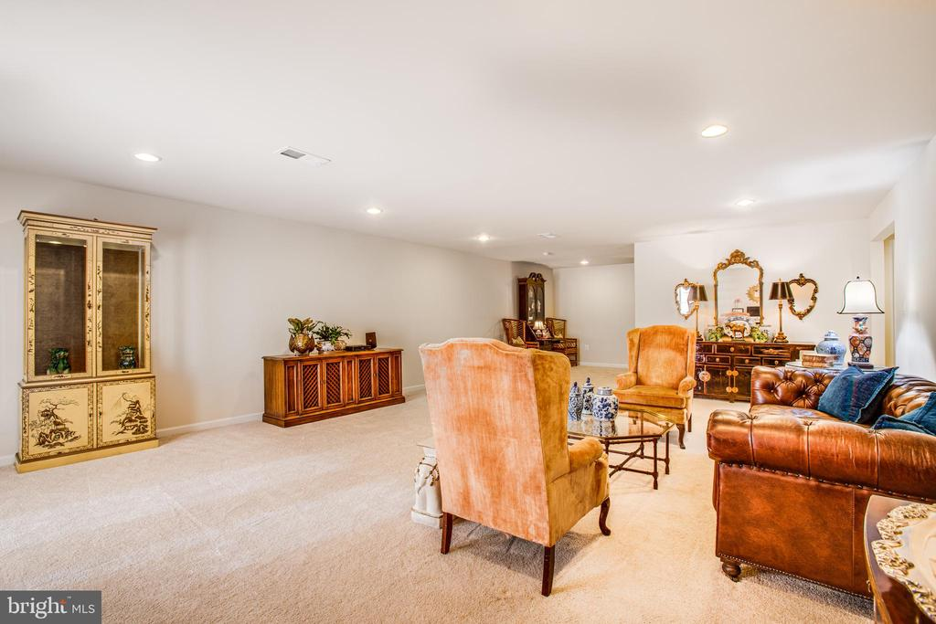 Lower level 2d living space - 9808 BALLS BLUFF DR, FREDERICKSBURG