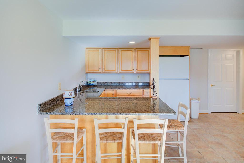 Lower level wet bar - 19771 GREGGSVILLE RD, PURCELLVILLE