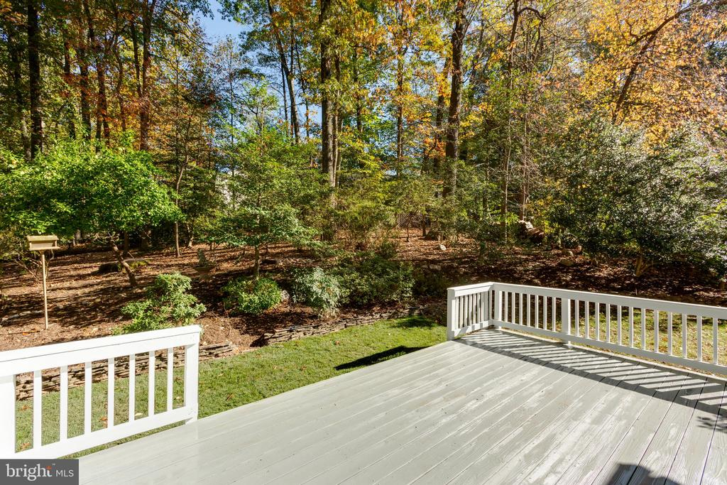 Enjoy the privacy - 8928 MAURICE LN, ANNANDALE