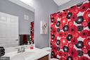 Hall bathroom - 21618 ROMANS DR, ASHBURN