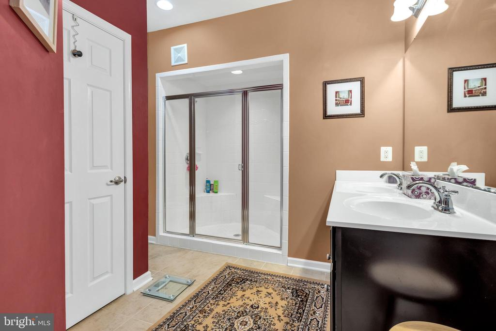 Luxurious master bath with HUGE shower - 21618 ROMANS DR, ASHBURN