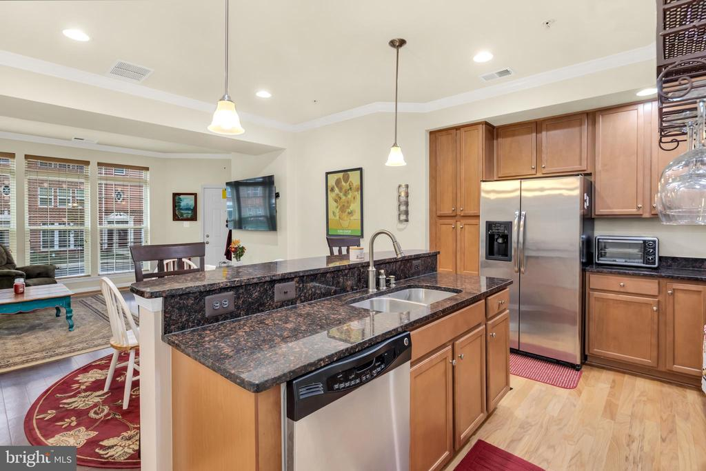 Granite countertops, stainless steel appliances - 21618 ROMANS DR, ASHBURN