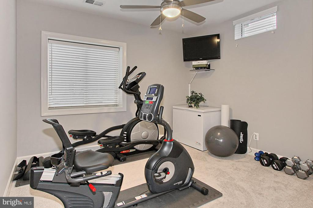 Bedroom #6 or Gym or....... w/ CF and Closet - 23082 BRONSTEIN LN, BRAMBLETON