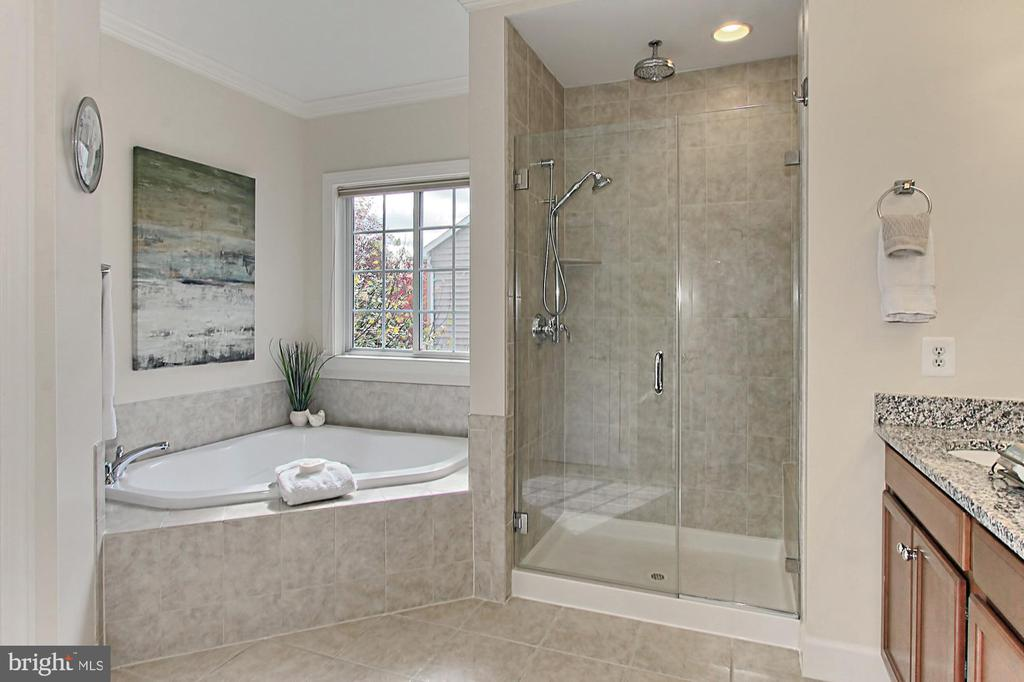Owners Bath with spa toned tile, granite counters - 23082 BRONSTEIN LN, BRAMBLETON
