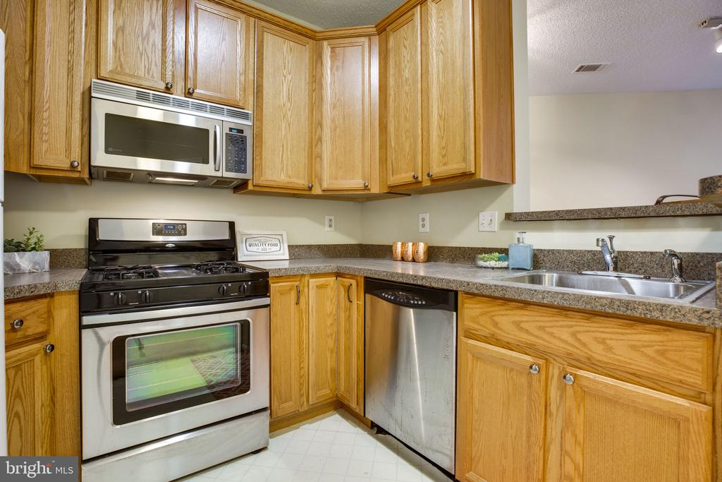 Kitchen! Fully equipped with gas stove! - 6011 ROSEBUD LN #101, CENTREVILLE
