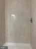 Master Bath Shower - 323 WOLFE ST, FREDERICKSBURG