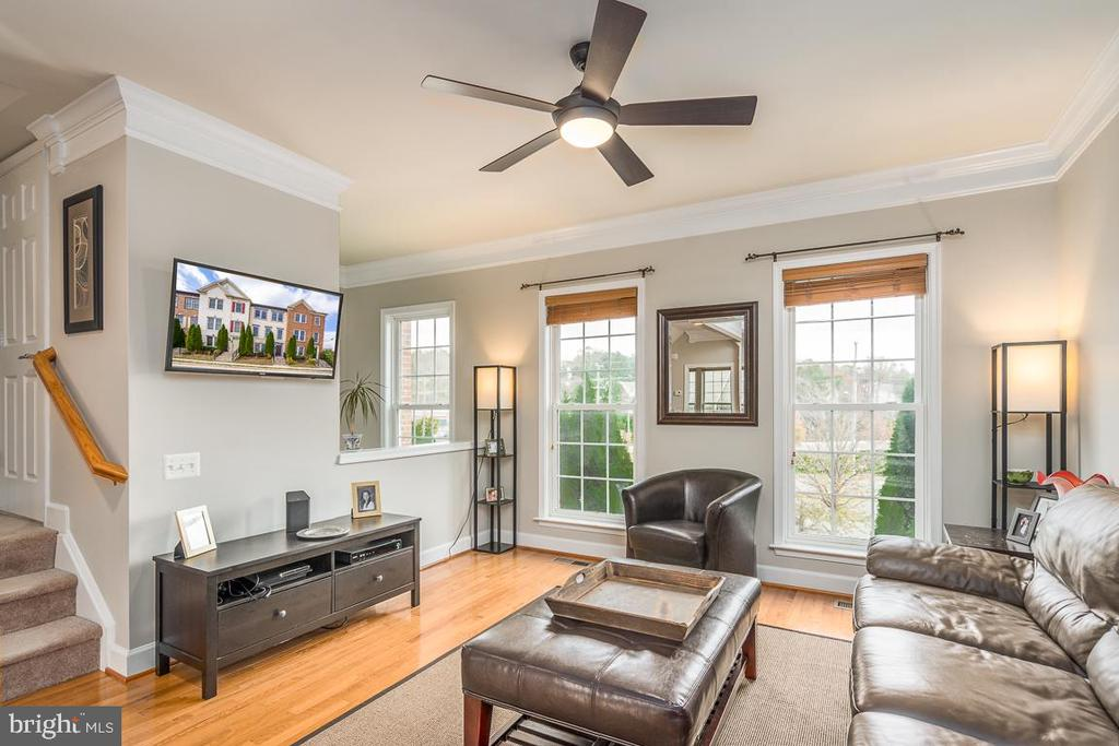Gorgeous light filled living room! - 191 GREAT LAUREL SQ SE, LEESBURG