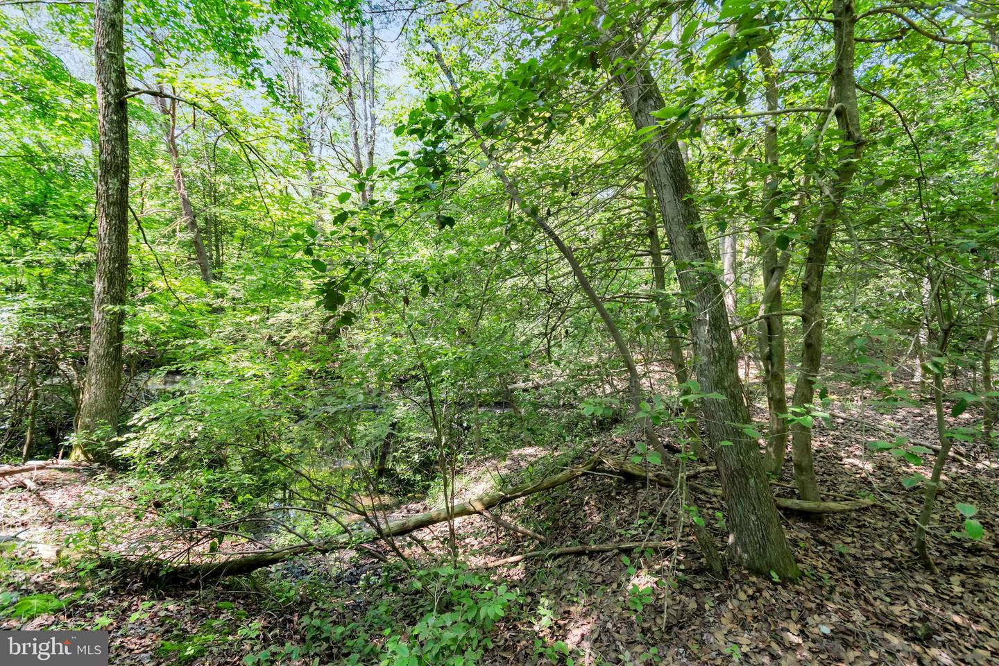 Additional photo for property listing at  Millville, New Jersey 08332 United States