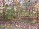 View of backyard - 239 WASHINGTON ST, LOCUST GROVE