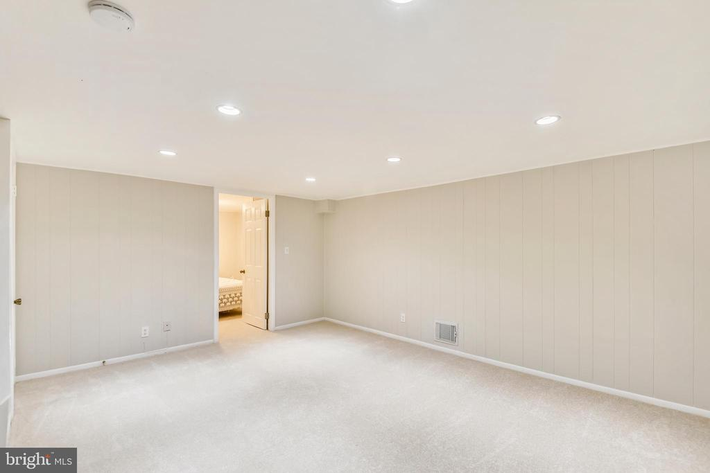 Lower level, perfect for relaxing! - 3022 S ABINGDON ST, ARLINGTON
