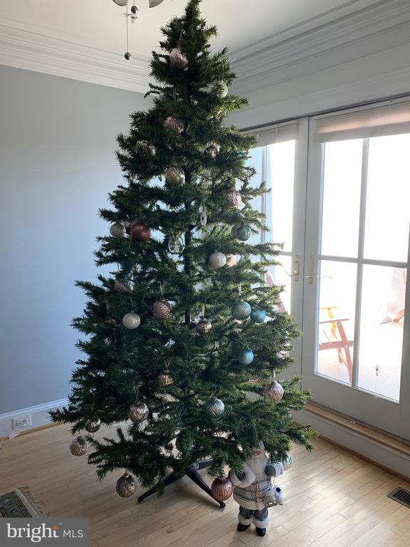 9 FT XMASS TREE IN GREAT ROOM - 1335 14TH ST N, ARLINGTON