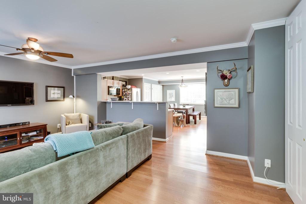 Crown molding and overhead lighting in living room - 1543 N VAN DORN ST #B, ALEXANDRIA
