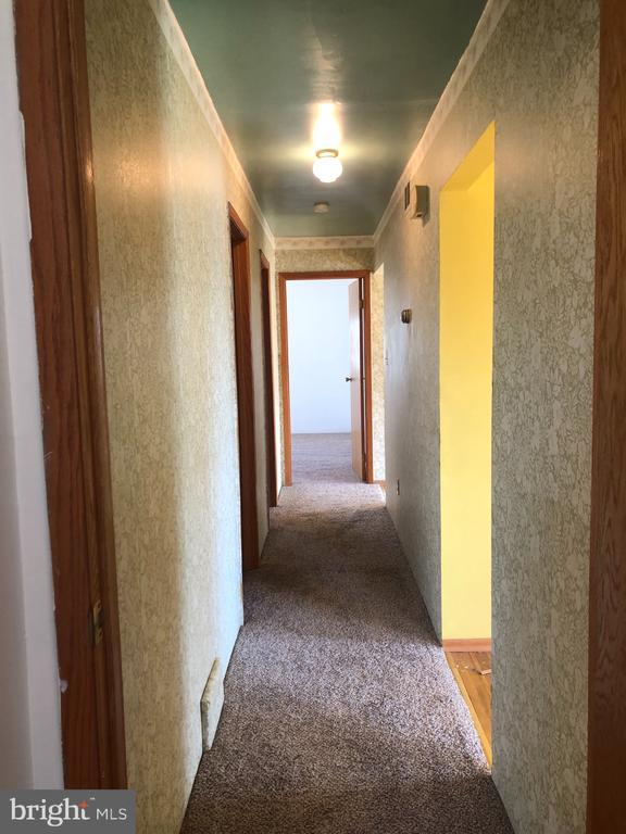 Hall with new carpet. - 120 E CRISER RD, FRONT ROYAL