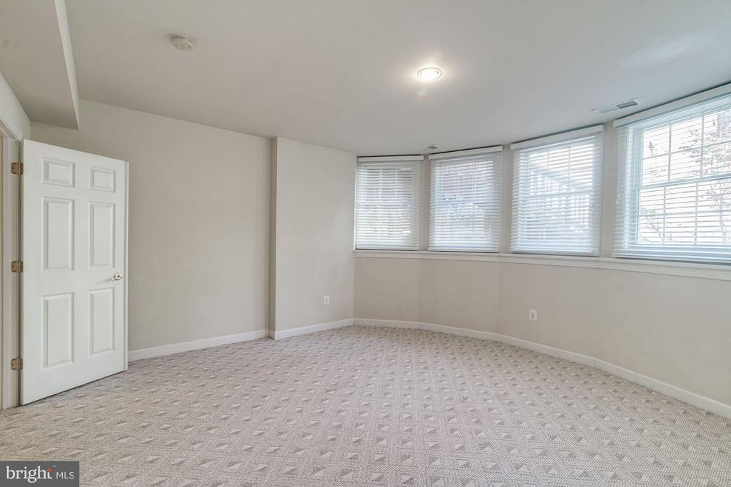 Bonus Room for Fitness, Lounge, etc. - 7310 BEVERLY MANOR DR, ANNANDALE