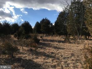 Terrain pour l Vente à Burlington, Virginie-Occidentale 26710 États-Unis