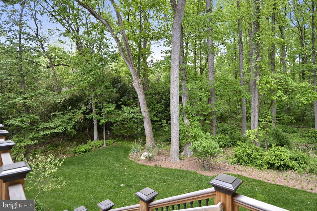 Summer View of the backyard with a stream - 1070 VISTA DR, MCLEAN