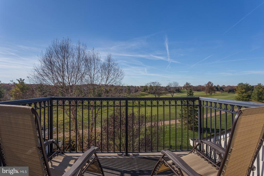 Views from the upper balcony - 18375 FAIRWAY OAKS SQ, LEESBURG