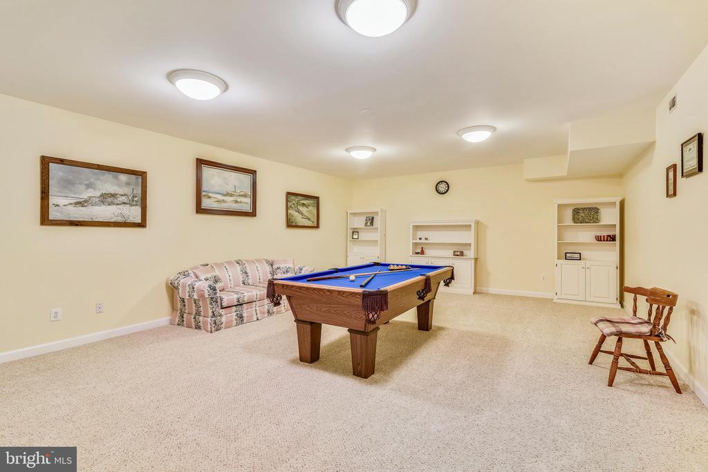 Lower Level Rec Room/Media Room - 916 MONROE ST, HERNDON