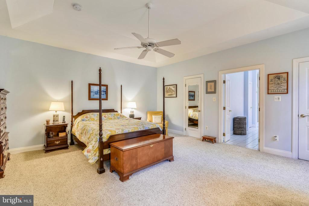 Main Level Master with Deep Tray Ceiling - 916 MONROE ST, HERNDON
