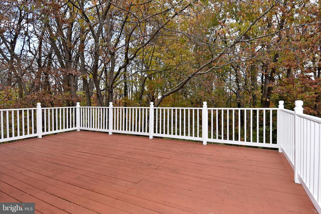 Complete privacy and wooded view. - 535 N LONGFELLOW ST, ARLINGTON