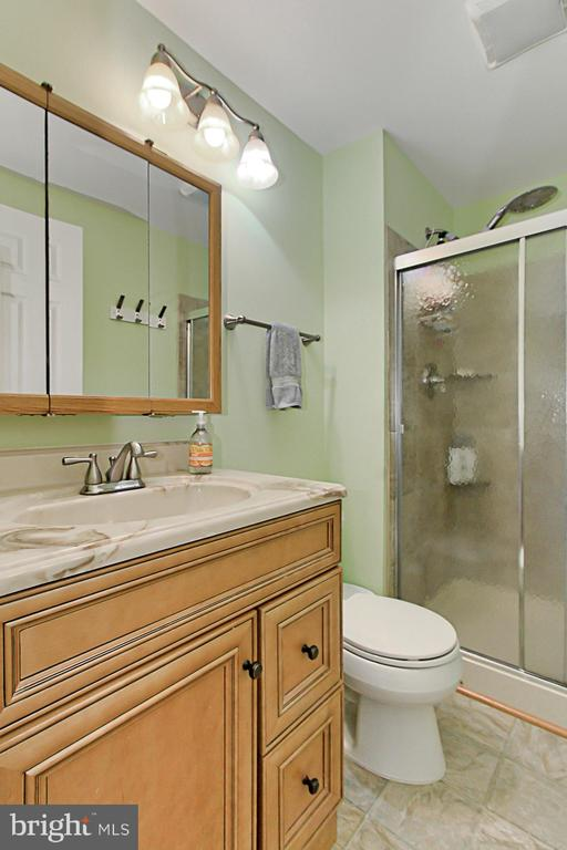 Updated Master Bath with Shower & Glass Doors - 9924 MANET RD, BURKE