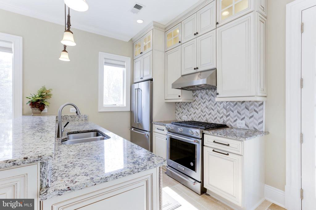Second,fully appointed gourmet kitchen for guests. - 11643 BLUE RIDGE LN, GREAT FALLS