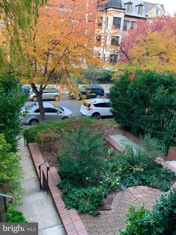 Common Area Front Yard - 1324 FAIRMONT ST NW #B, WASHINGTON