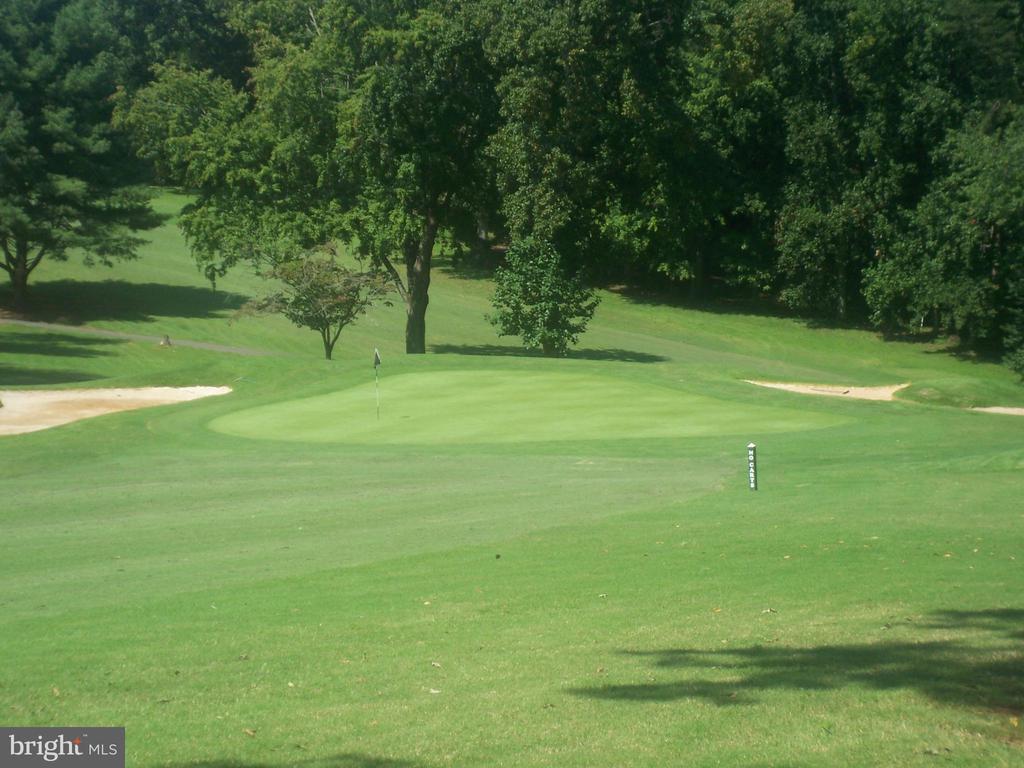 Golf Course - 126 HARRISON CIR, LOCUST GROVE
