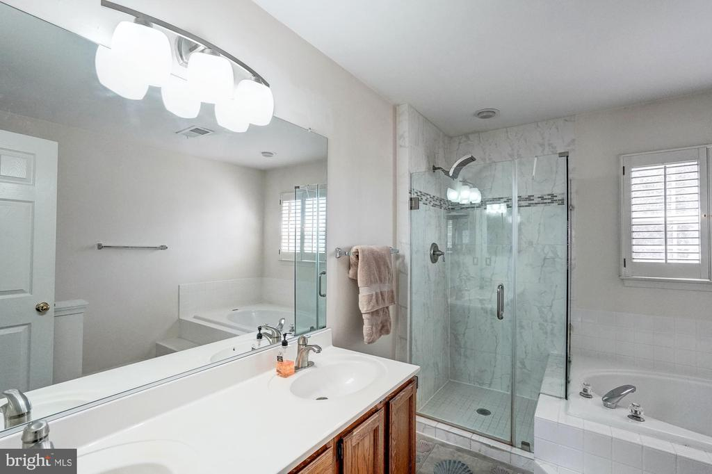 Master bath with beautiful rimless shower - 46489 DANFORTH PL, STERLING