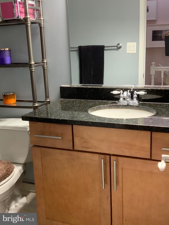 Full Bathroom - Hallway 2nd Flloor - 3802 PORTER ST NW #302, WASHINGTON