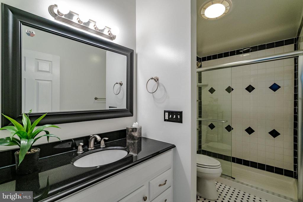 Updated Bathroom - 132 E MEADOWLAND LN, STERLING