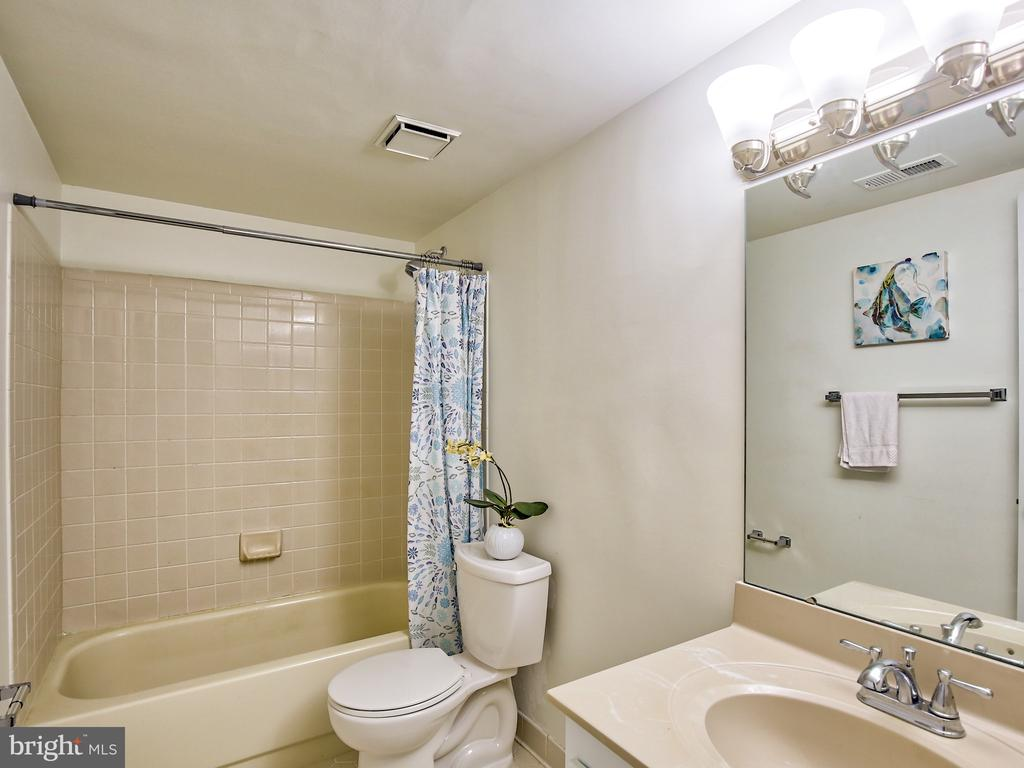 Lower level full bathroom - 17578 COACHMAN DR, HAMILTON