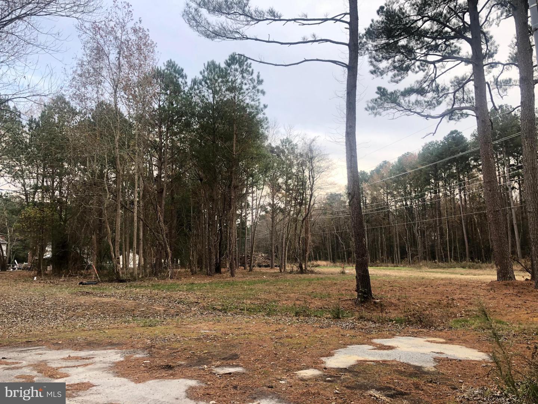 土地,用地 为 销售 在 Hebron, 马里兰州 21830 美国