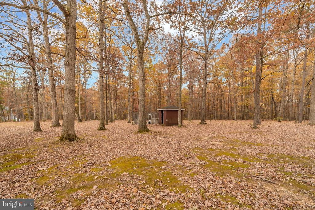 shed & fenced area - 11516 ORANGE PLANK RD, SPOTSYLVANIA